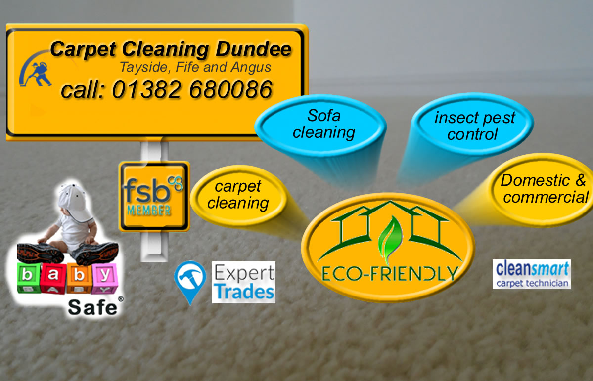 domestic and commercial cleaning services
